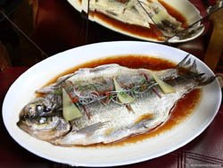 Steamed White Fish