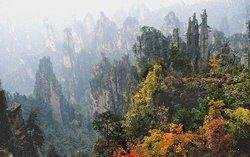Fall Foliage in Zhangjiajie National Forest Park
