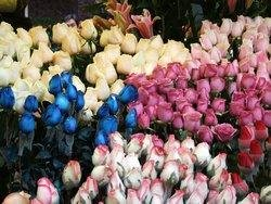Guangzhou's Spring Festival Flower Fair