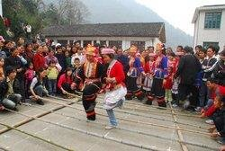 Jin Feng Festival