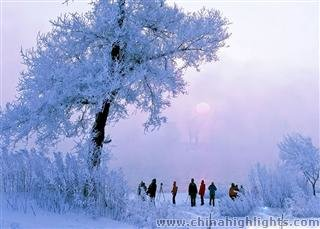 Jilin Rime Ice and Snow Festival