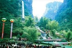 Zhangjiajie International Forest Festival