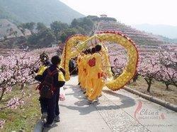 Fenghua Peach Flower Festival