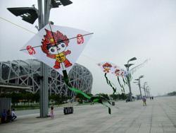 flying kites in Beijing Olympic Park