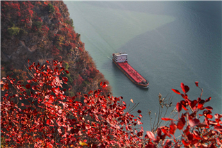 Yangtze River Cruise of President 1