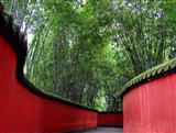 Free time in Chengdu