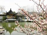 the Plum Garden (Meiyuan)