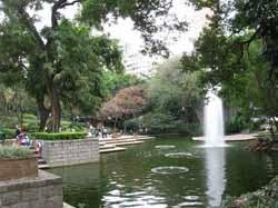 Hong Kong's 5 Best Parks for Tourists