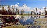 Cruise on the Erhai Lake