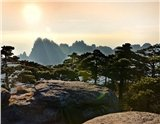 Photos of Huangshan Highlights Tour