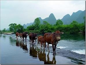 6 Free Things to do in Yangshuo