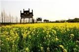 Shexian Tangyue Memorial Arches