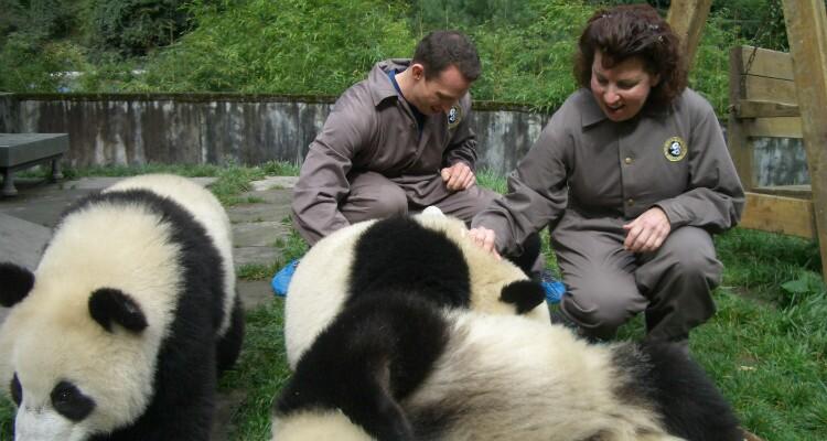 feed pandas in panda base