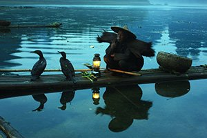 Cormorant Fishing on the Li River