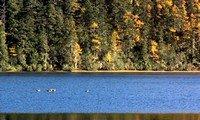 shangrila pudacuo national park