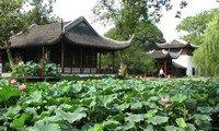 humble administrator garden in suzhou