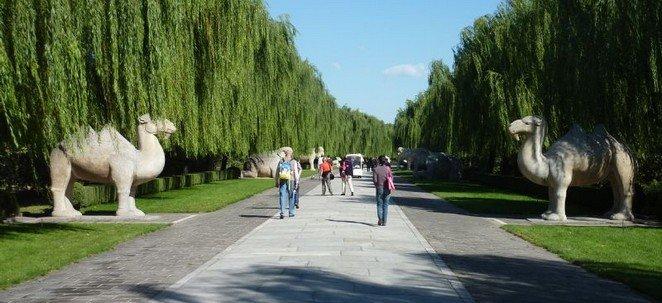 Sacred Road Beijing