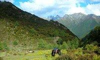 western sichuan daocheng tour