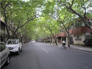 Wukang Lu