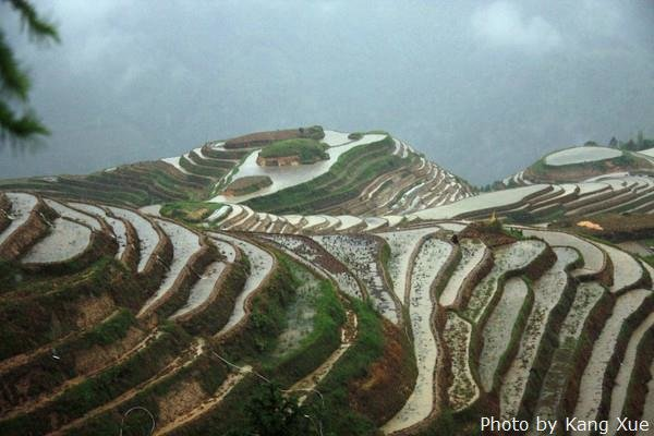 The rice terrace at Dazhai Village