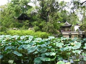 May in one of Suzhou's famed gardens