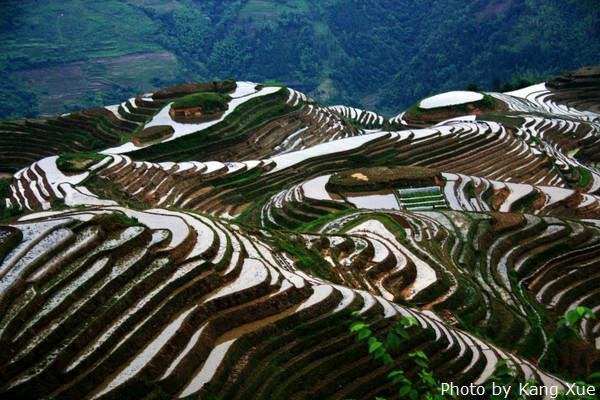 The mirror-like Longji Terraces in spring