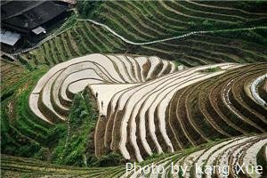 Photography Tips for the Longsheng Rice Terraces