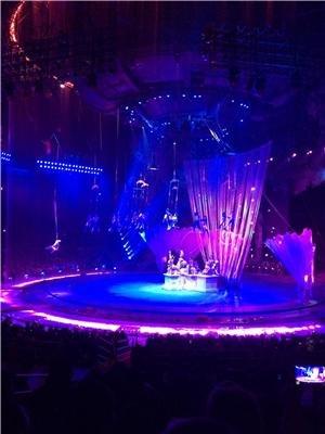 Changlong International Circus