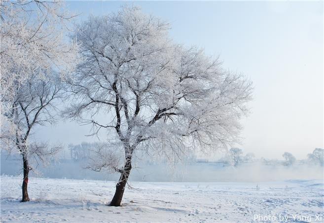 The magical Jilin Ice Rime