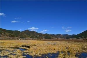 Caohai Scenic Spot