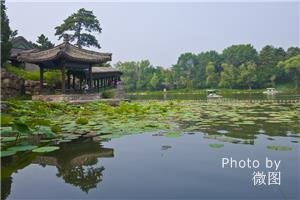 China's Top 6 Beautiful Gardens