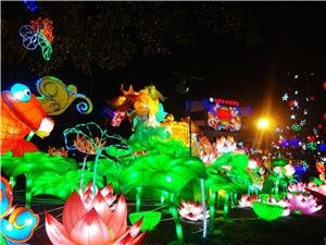 colored lights park in Lantern Festvial