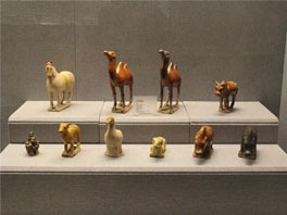 exhibits in luoyang museum