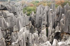 Scenery of Large & Small Stone Forests