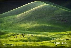 China's Top 6 Spectacular Grasslands and Pastures