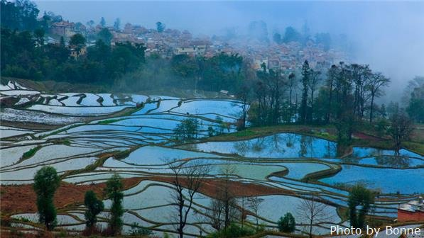 yuanyang terrace field