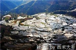 yuanyang terrace field