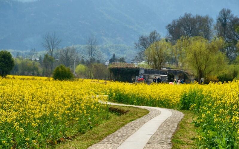 Pingshan: a Beautiful Village near the Yellow Mountains