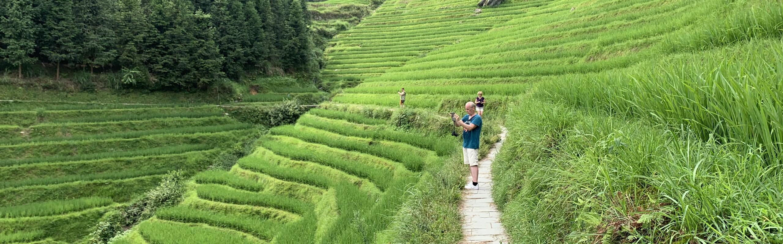7 Days Longji Rice Terraces, Li River, and Yulong River Hiking Tour