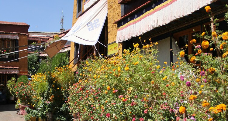 Ani Tsangkhung Nunnery with flowers