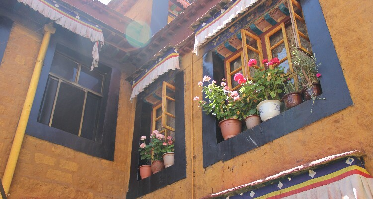 windows with flowers of a nunnery