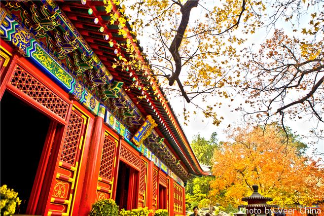 Best places to see fall foliage in beijing china highlights for Good places to travel in november