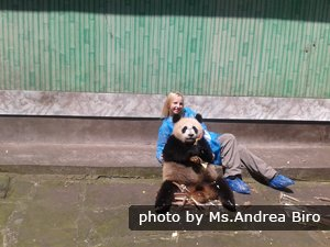 taking pictures with pandas