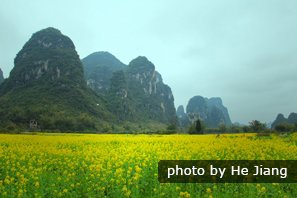 Top Places to Visit in Spring in China