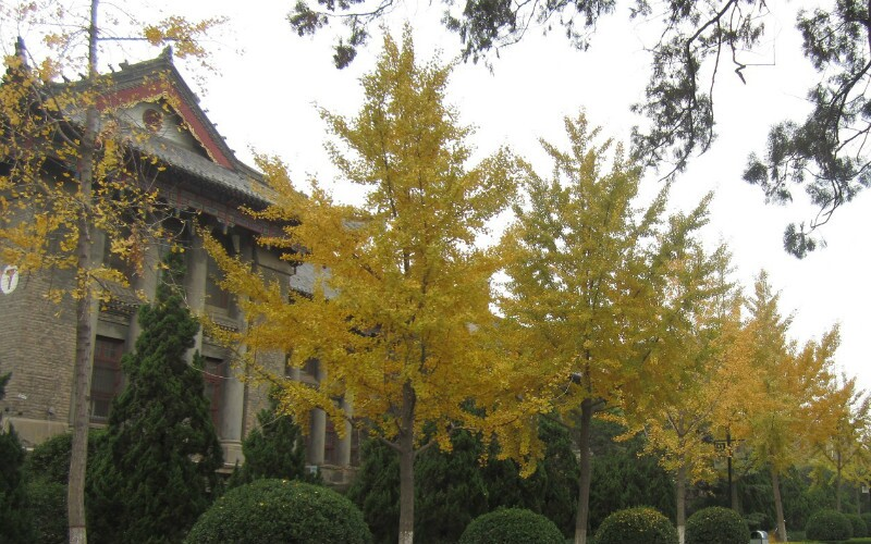 Kaifeng Weather - Best Time to Visit Kaifeng