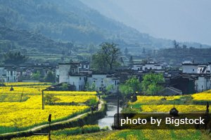 Wuyuan scenery in spring