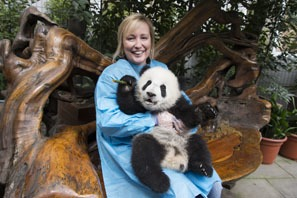 Dujiangyan Panda Base — Panda Keeper Program