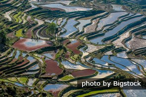 yuanyang terraced field