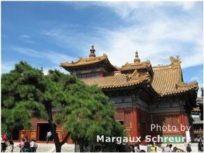 Summer Photography Hot Spots in Beijing