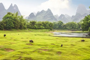 Top 10 Provinces for Rural Tours in China